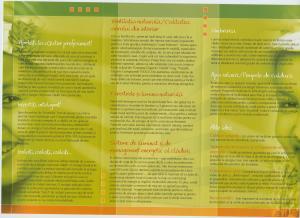 Brochure - inside